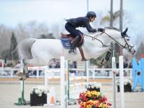 Oliva, Spain - 2015 February 19: during Gold 4 competition at CSI Mediterranean Equestrian Tour II at Oliva Nova Equestrian Center. (photo: © Herve Bonnaud)